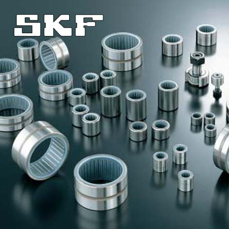 瑞典 SKF 轴承